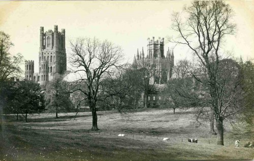 Ely Front 002
