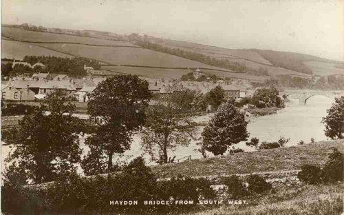 Haydon Front 002