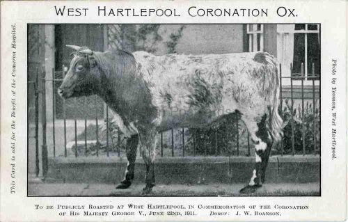 Hartlepool Front 025